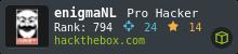 e-nigmaNL