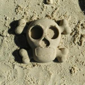 Skullwc